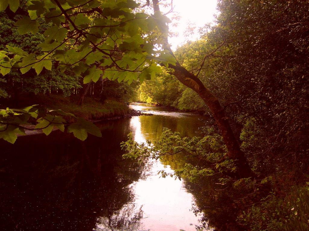 Avonmore-Natural-wonders-5