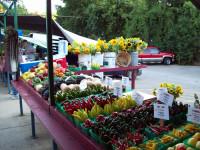 farmer-market-Farmers-Market-Veggies